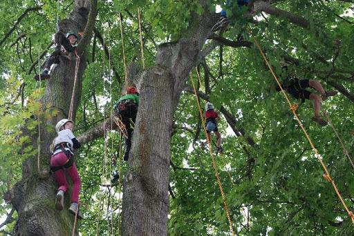 Spiel und Spaß im Bürgerpark: Gemeinsam für Vielfalt e.V. und seine Partner begeisterten mit einem vielfältigen Herbstferien-Programm Kinder und Familien (Pressemitteilung GfV)