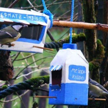 Herbstferien: Wir basteln Vogelfutter-Häuschen aus Tetra-Packs